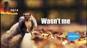 NA14 Squirrel